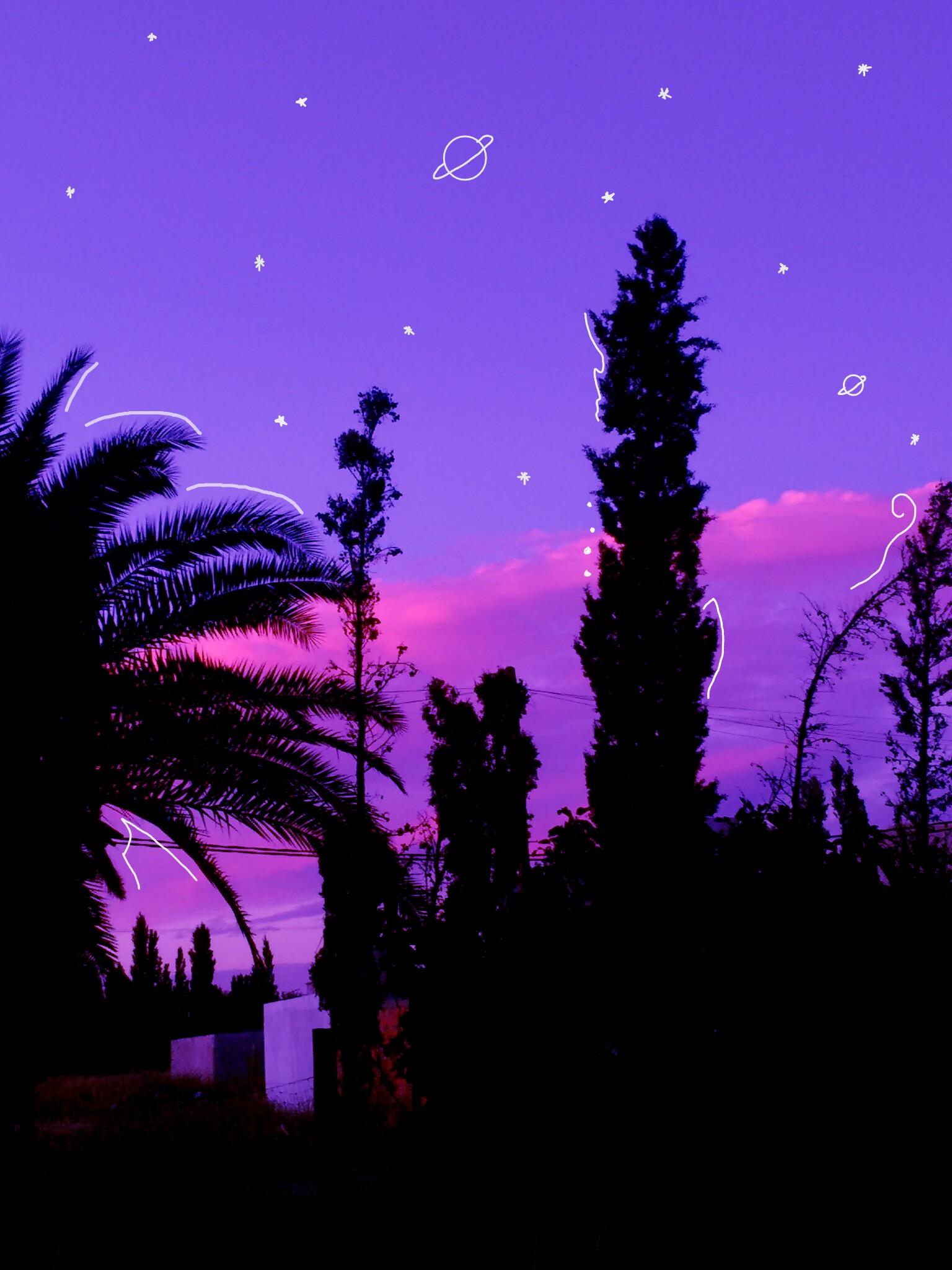 Purple tumblr