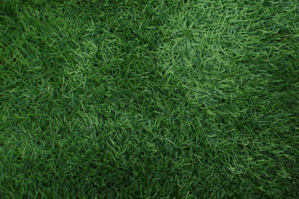 Grass background Clipart Freetoedit Green Grass Background Texture Grig15 Patter Picsart Freetoedit Green Grass Background Texture Grig15 Patter