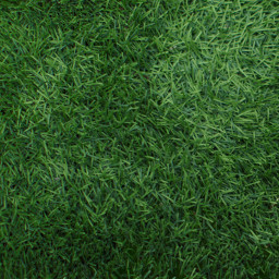freetoedit green grass background texture