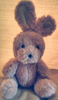 toys dailyphoto dailychallenge bunny bunnyrabbit dpctoys