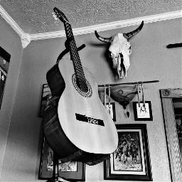 blackandwhite madewithpicsart guitar classicalguitar skull