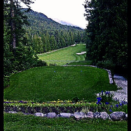 freetoedit golf golfcourse golfing