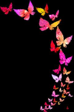 butterflies glitter galaxy freetoedit